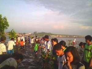 INI kegiata penanaman pohon mangrove yang terkenal di desa penunggul dan semua pohon mangrove yang adad disana dirintis oleh pak mukarim
